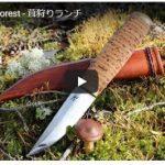キノコ狩り動画