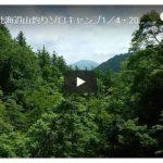 ソロキャンプ動画(渓流釣りキャンプ)
