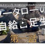 ソロキャンプ動画(自給自足)
