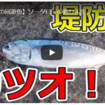 ソロキャンプ動画(釣り・魚料理)