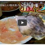 魚をさばく(カワハギ)