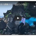 サバイバル系動画(無人島での遭難を想定)